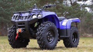 Квадроцикл Baltmotors ATV 400 EFI на лесной поляне